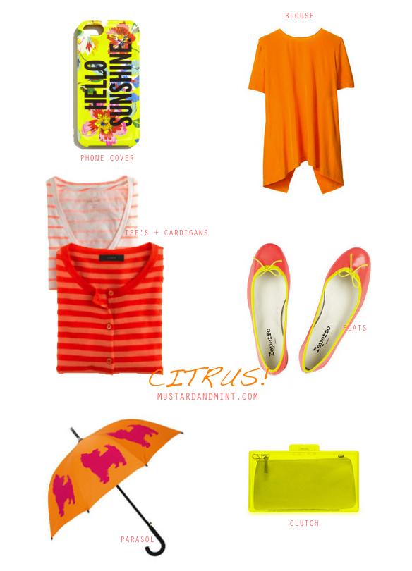 Blog Citrus